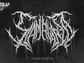 Slamavaria 2019