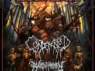 Condemned, Relics Of Humanity, Pighead & Supports