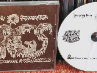 Festering Recto Gangrenous Slime ‎– Noisome Collection Of Vomitous Sounds
