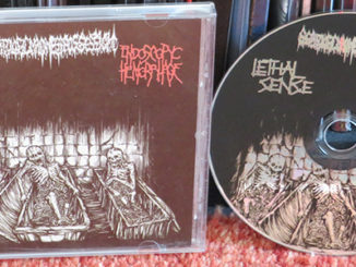 Scatologic Madness Possession / Endoscopyc Hemorrhage / Lethal Sense
