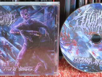 With All My Hate – Deed Of Voracity